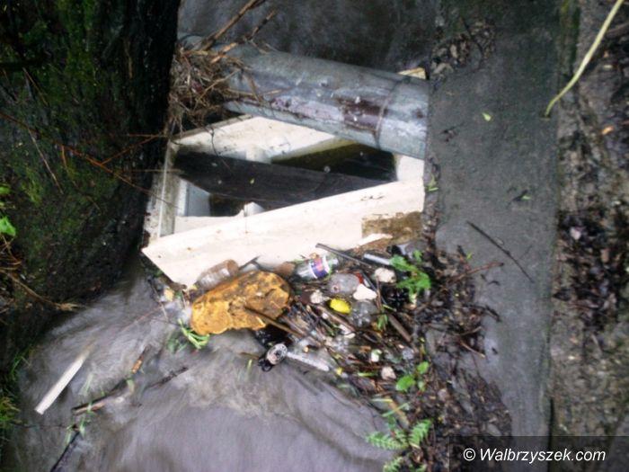 Wałbrzych: Sporo złomu i odpadów w wałbrzyskich potokach