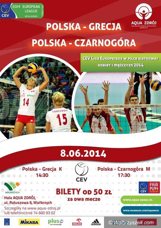 Wałbrzych: Najlepsza europejska siatkówka w Wałbrzychu