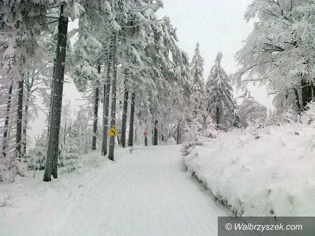 REGION, Andrzejówka: Jest szansa, że Bieg Gwarków się odbędzie
