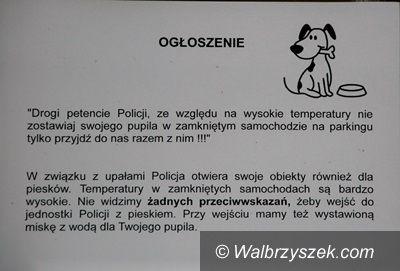 Wałbrzych: Przyjdź z psem na komendę