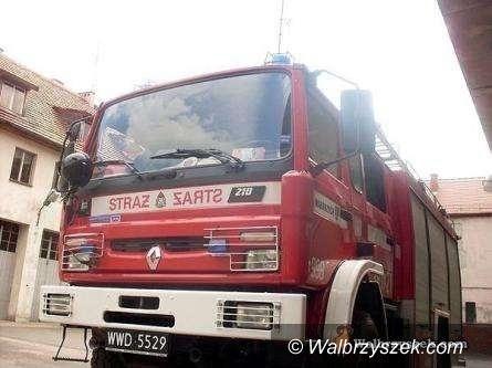 Wałbrzych: Płonęły drzewa na zboczu Chełmca