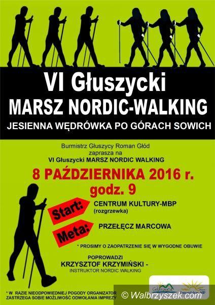 Głuszyca: Przed nami VI Głuszycki Marsz Nordic–Walking