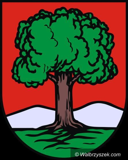 Wałbrzych: Siatkarska Victoria dostała na promocję gminy 100 tys. zł