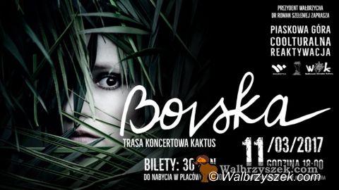 Wałbrzych/REGION: Koncertowy weekend