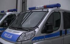 Wałbrzych: Niecodzienna interwencja strażaków i policji – koń ugrzązł w kanale