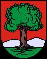 Wałbrzych: Prezydent powołał Radę Programową