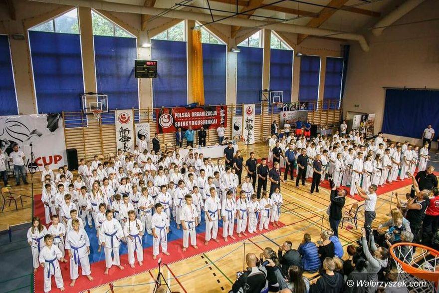Wałbrzych: 4 medale dla karateków Klubu Karate Full Contact Wałbrzych