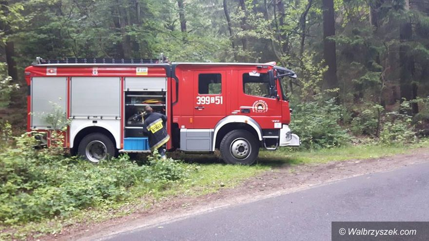 REGION, Mieroszów: Kolejny niewybuch odnaleziony