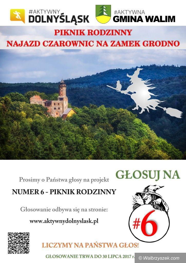 REGION, Zagórze Śl.: Oddaj głos na piknik rodzinny na Zamku Grodno