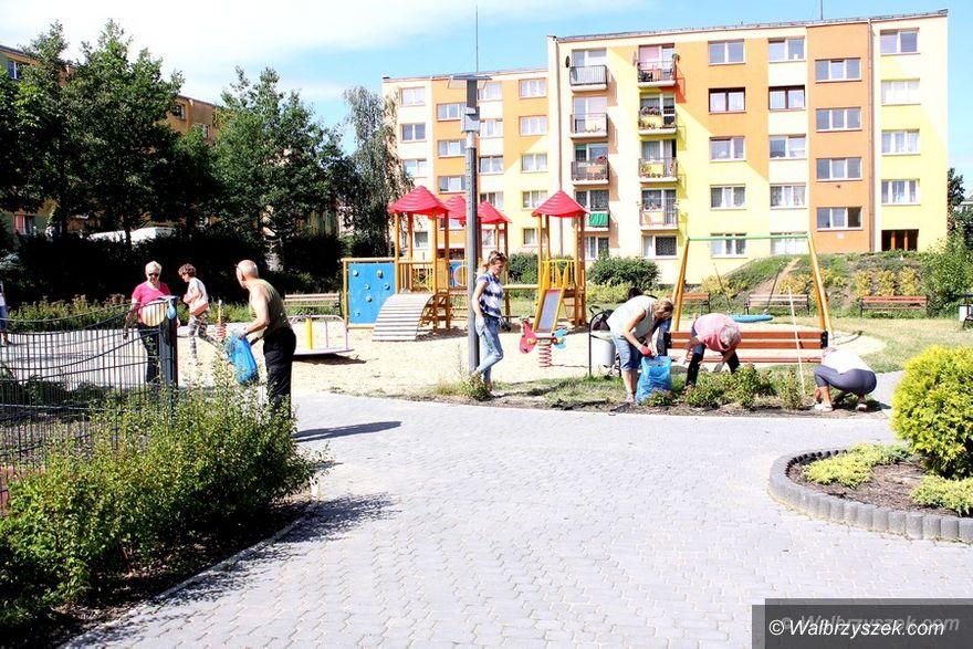 Wałbrzych: Wakacyjny Wolontariat Międzypokoleniowy