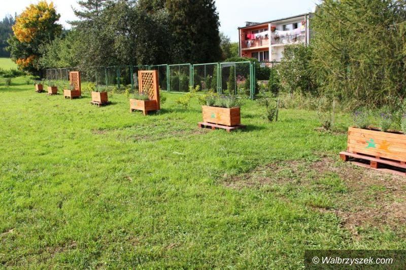 REGION, Czarny Bór: Czarnoborskim seniorom można pozazdrościć pomysłów