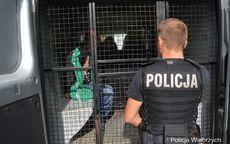 Wałbrzych: Ukradli alkohol, a następnie grozili pozbawieniem życia pracownikowi ochrony