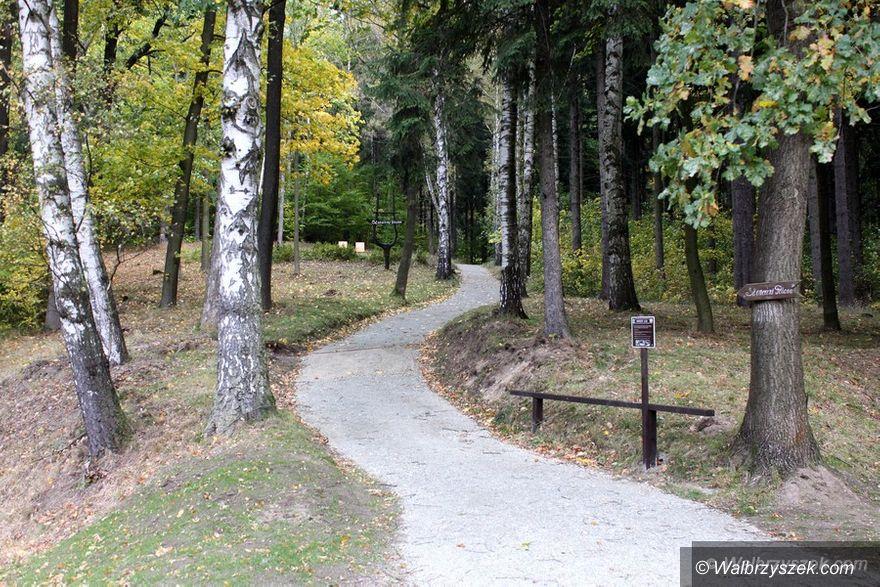 REGION, Jedlina-Zdrój: Ścieżka w Mniszym Lesie i Polana Oddechowa w Jedlinie