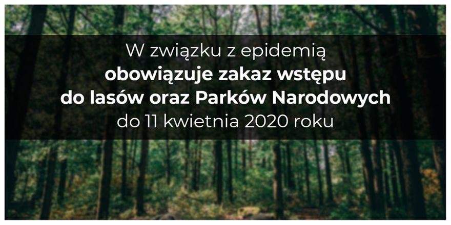 Wałbrzych/REGION: Zakaz wstępu do lasów