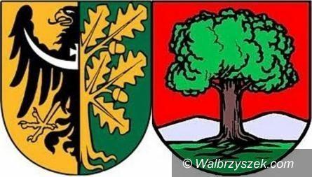 Wałbrzych/REGION: Przedszkolne dylematy