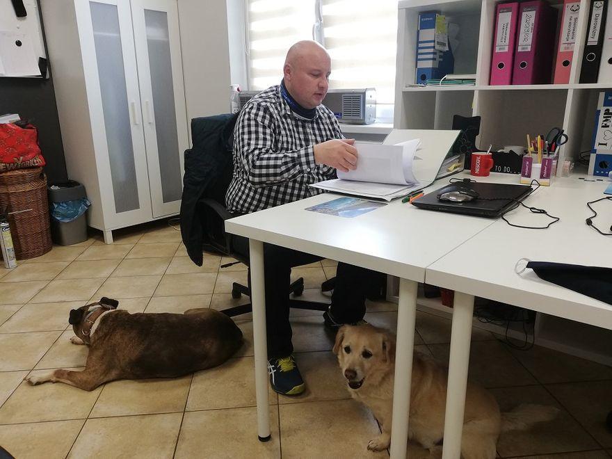 REGION, Boguszów-Gorce: Wrażliwi na krzywdę zwierząt