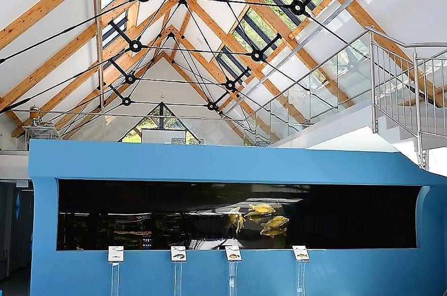 REGION, Zagórze Śląskie: Akwarium już otwarte