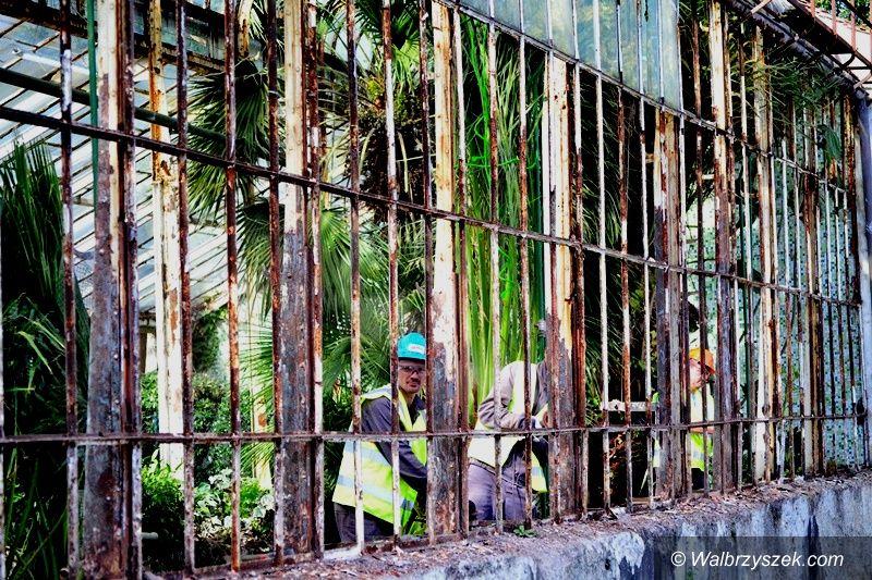 Wałbrzych: Szklarnia do remontu