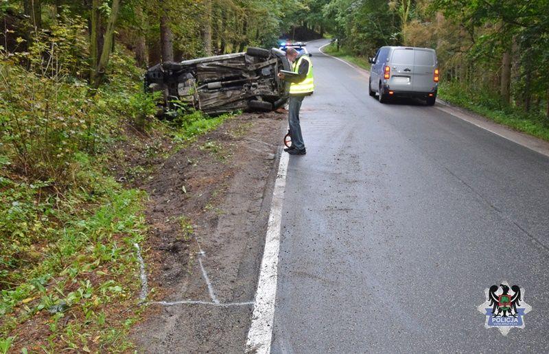 powiat wałbrzyski: Dzik sprawcą wypadku