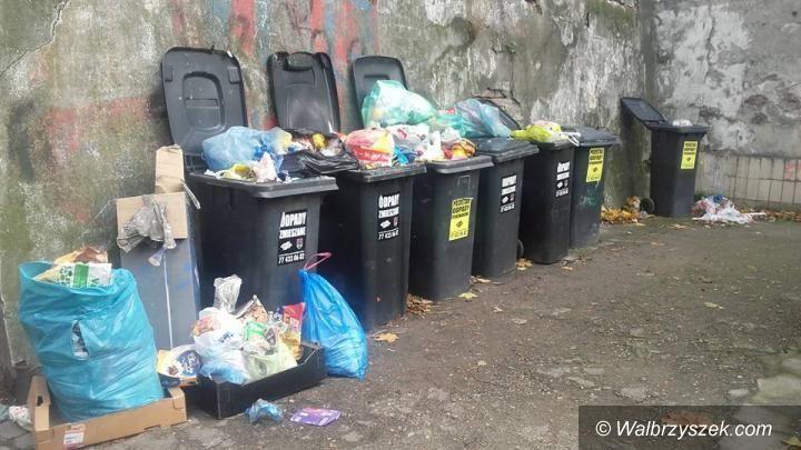 Wałbrzych: Śmieciowy problem