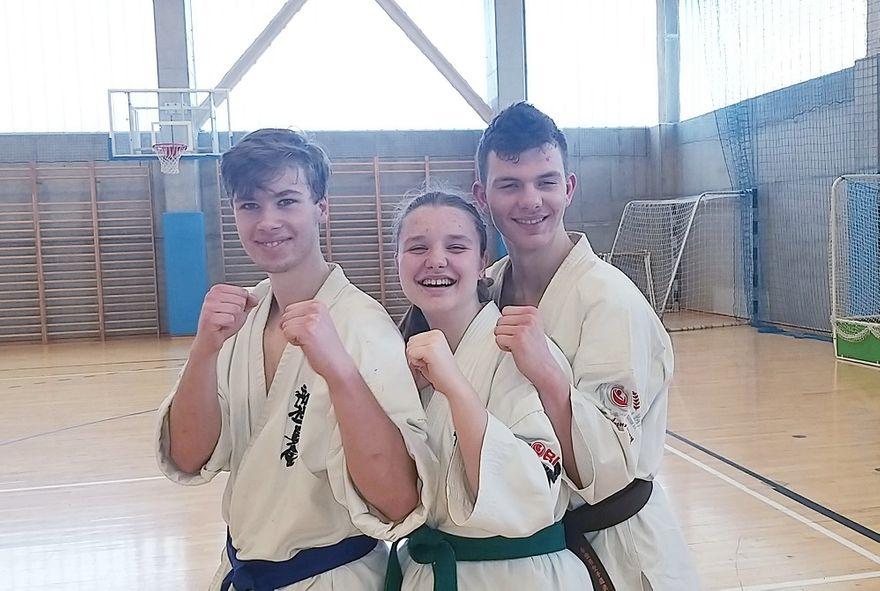 Boguszów-Gorce: Karatecy na konsultacjach