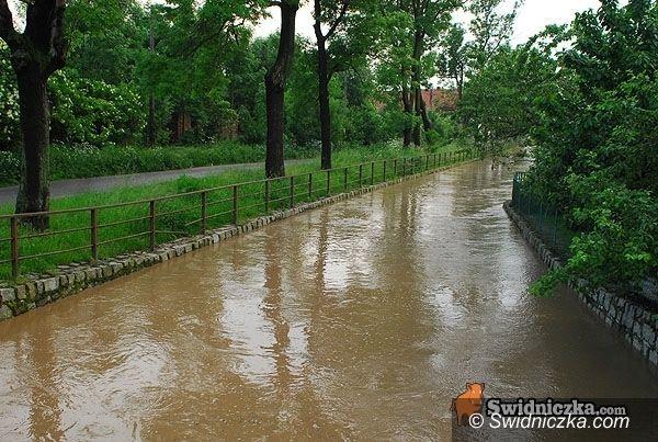 Dolny Śląsk: Rzeki się utrzymają w korytach?