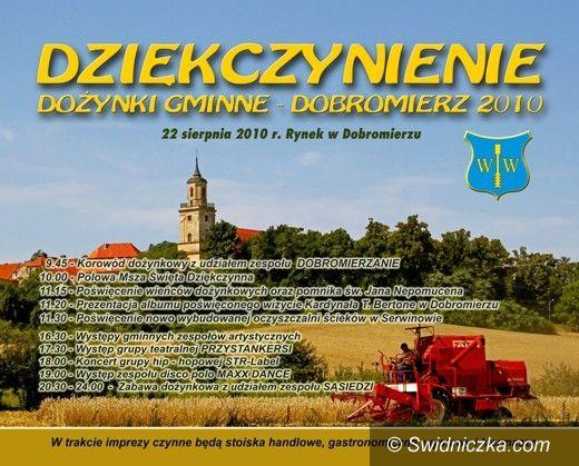 Dobromierz: Święto plonów w Dobromierzu z disco polo