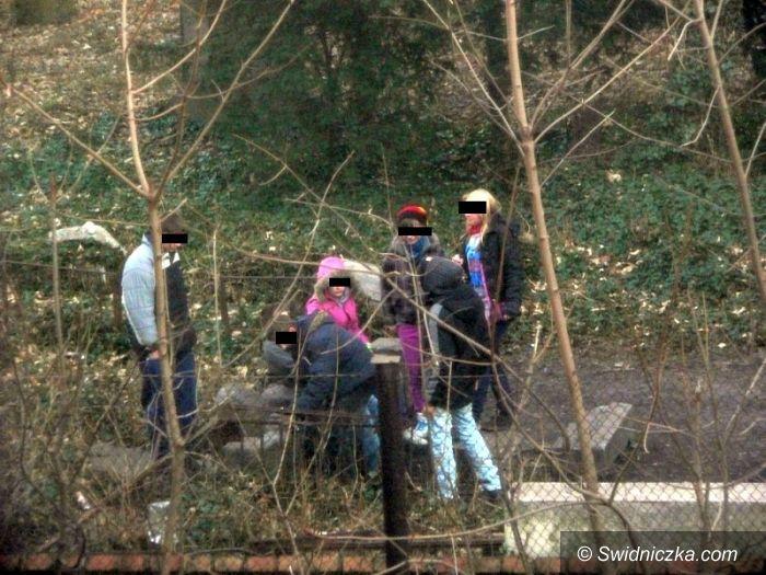 Świdnica: Co naprawdę dzieje się na ewangelickim cmentarzu – zobacz zdjęcia z libacji młodzieży