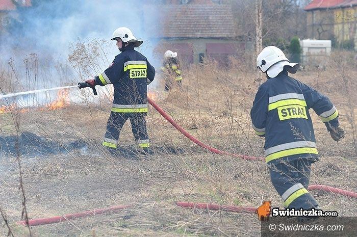 Jaworzyna Śląska: Grillowania nadszedł czas – uważajmy z ogniem!