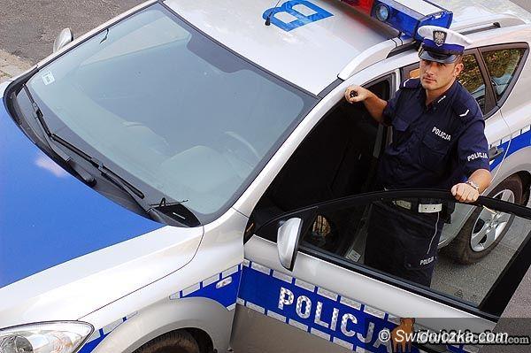 powiat świdnicki: Majowy weekend – podsumowanie policji