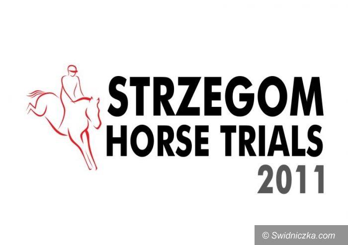 Strzegom: Strzegom Horse Trials: Rekordowa liczba zgłoszeń