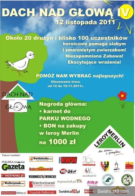 Świdnica: Zbudują budki dla ptaków