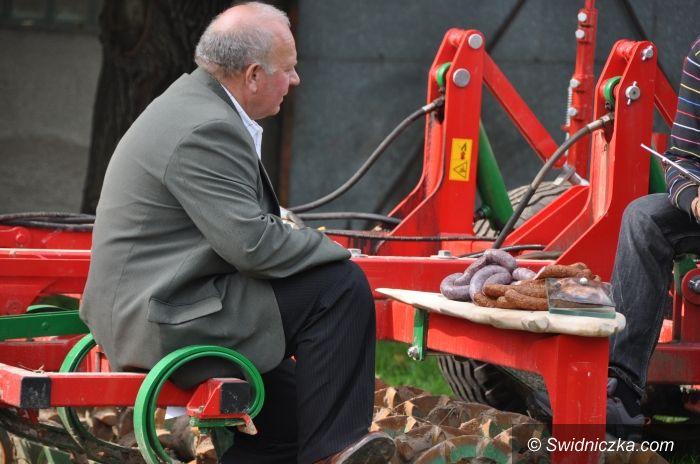 Gmina Świdnica: Orzeł Agrobiznesu dla RSP Jedność w Boleścinie