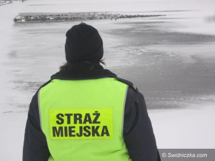 Świdnica: Strażnicy ostrzegają – Zalew Witoszówki to nie lodowisko!