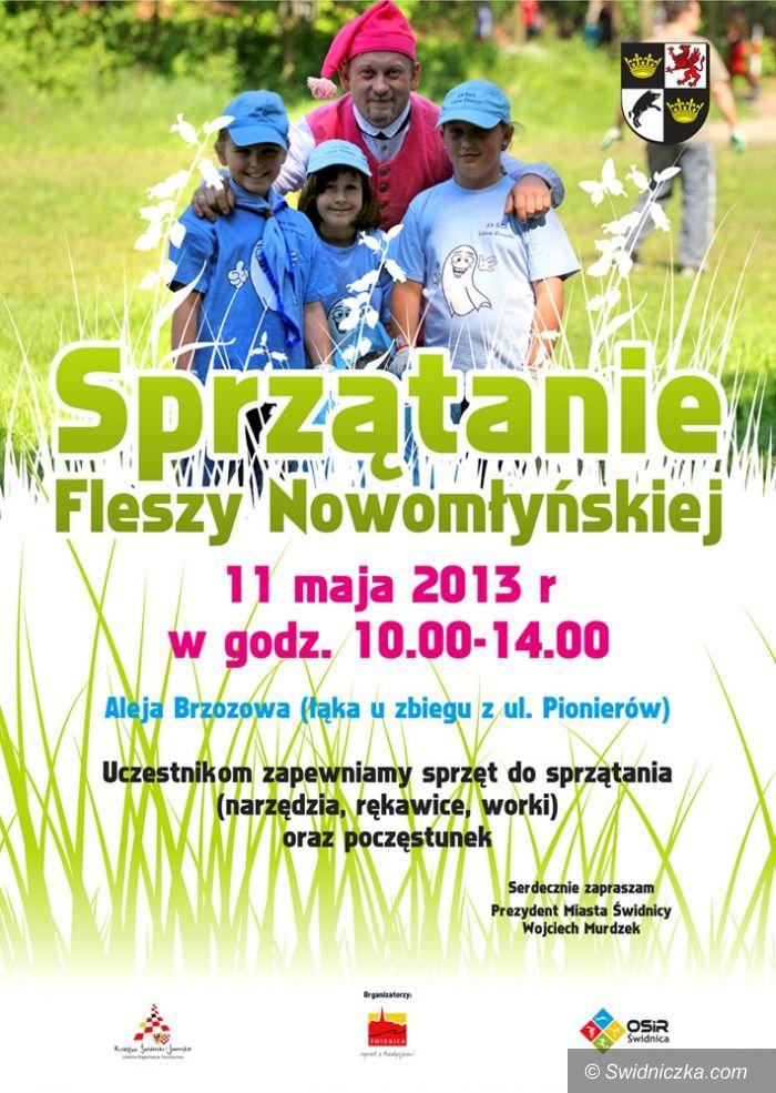 Świdnica: Wiosenne porządki na Fleszy