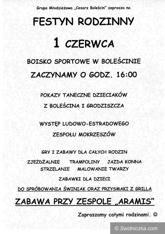 Boleścin: Zapraszamy na Festyn Rodzinny do Boleścina