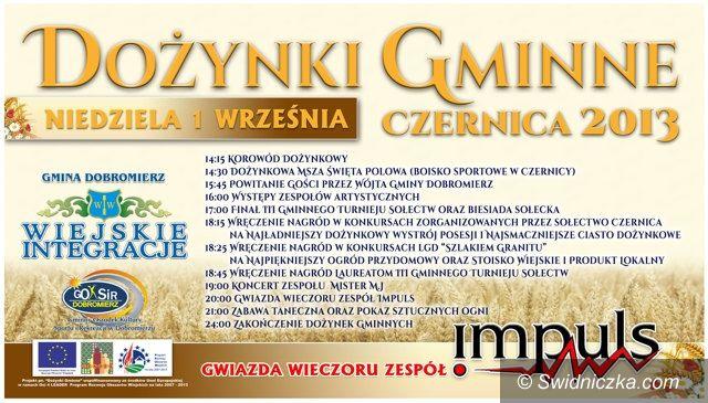 Czernica: Dożynki Gminne w Czernicy