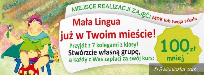 Region: Licencjonowana Szkoła Języków Obcych Mała Lingua