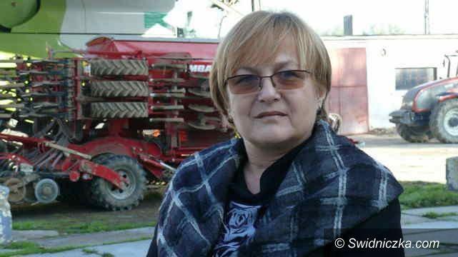 Gmina Strzegom: RSP w gminie Strzegom