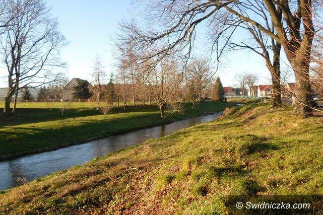 Gmina Dobromierz: Zadbano o koryto rzeki
