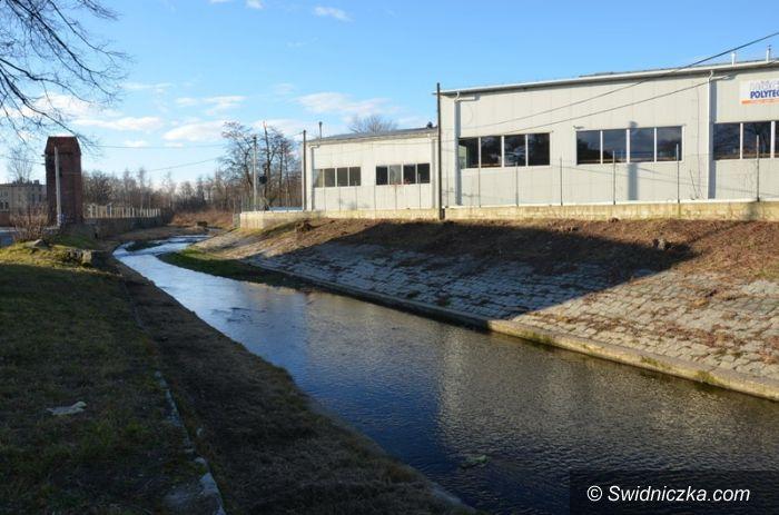 Gmina Strzegom: Rzeka nie śmietnik