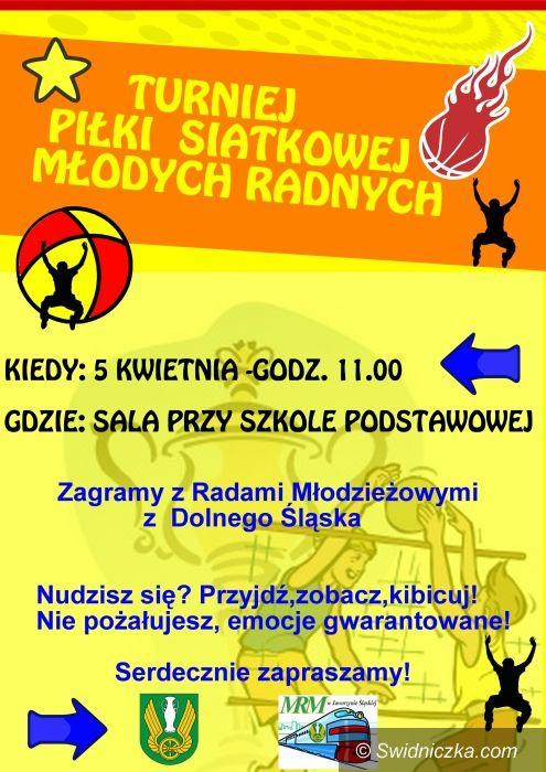Jaworzyna Śląska: Siatkarski turniej młodych samorządowców