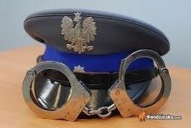 Strzegom: Ukradł maszynę budowlaną wartości 100 000 złotych