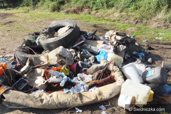 Mrowiny: Wyrzucali śmieci do lasu