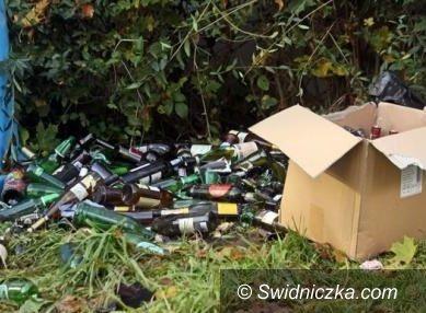 Świdnica: Wojewoda w sprawie wysypiska na Zarzeczu