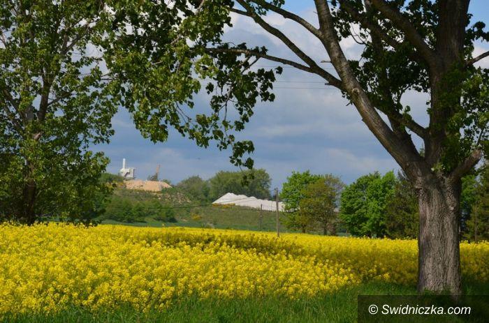 Gmina Strzegom: Rowerem przez gminę Strzegom Szlak rowerowy K2 (piastowski, granitowy)