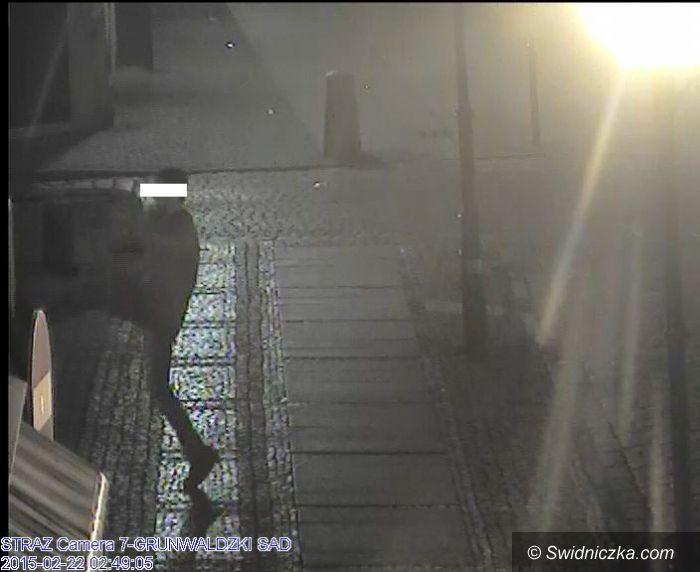 Świdnica: Uderzył strażnika miejskiego, odpowie przed sądem