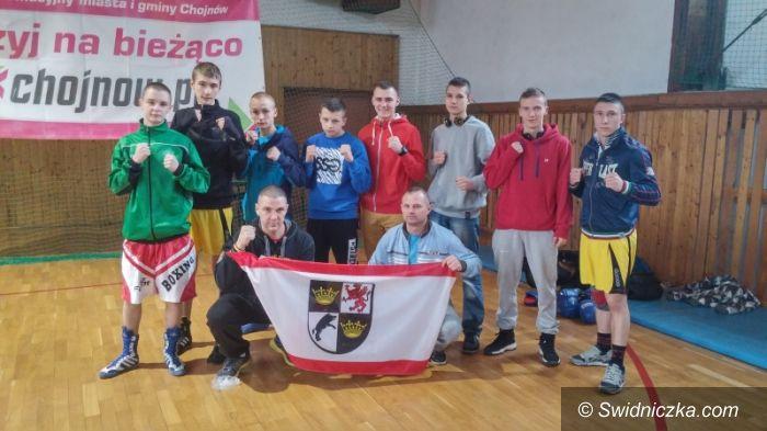 Kraj: Pasmo sukcesów pięściarzy ze Świdnicy!