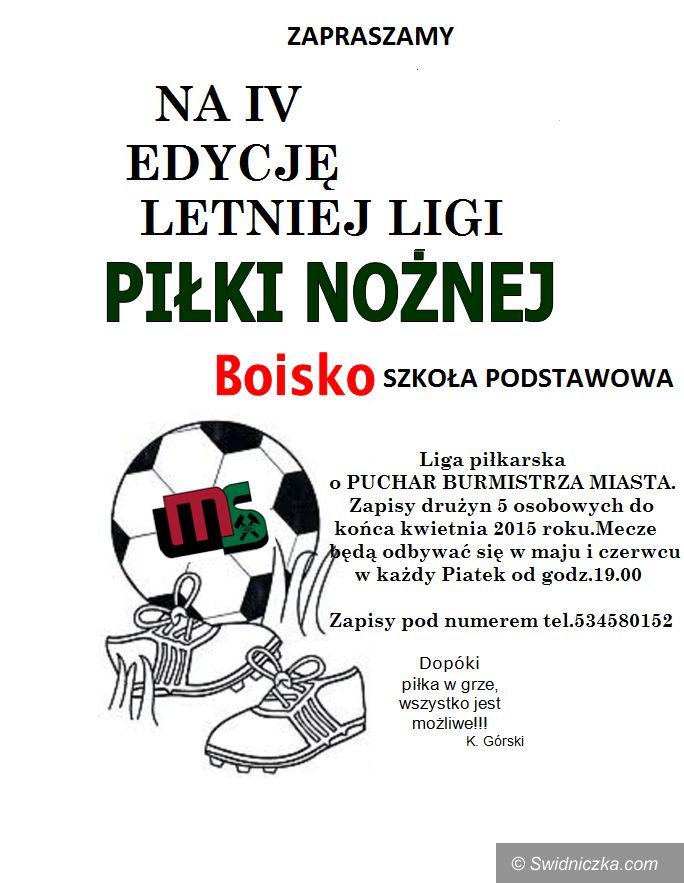 Jaworzyna Śląska: Rusza czwarta edycja LLPN