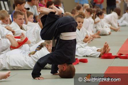 Jaworzyna Śląska: Zapraszamy na treningi judo